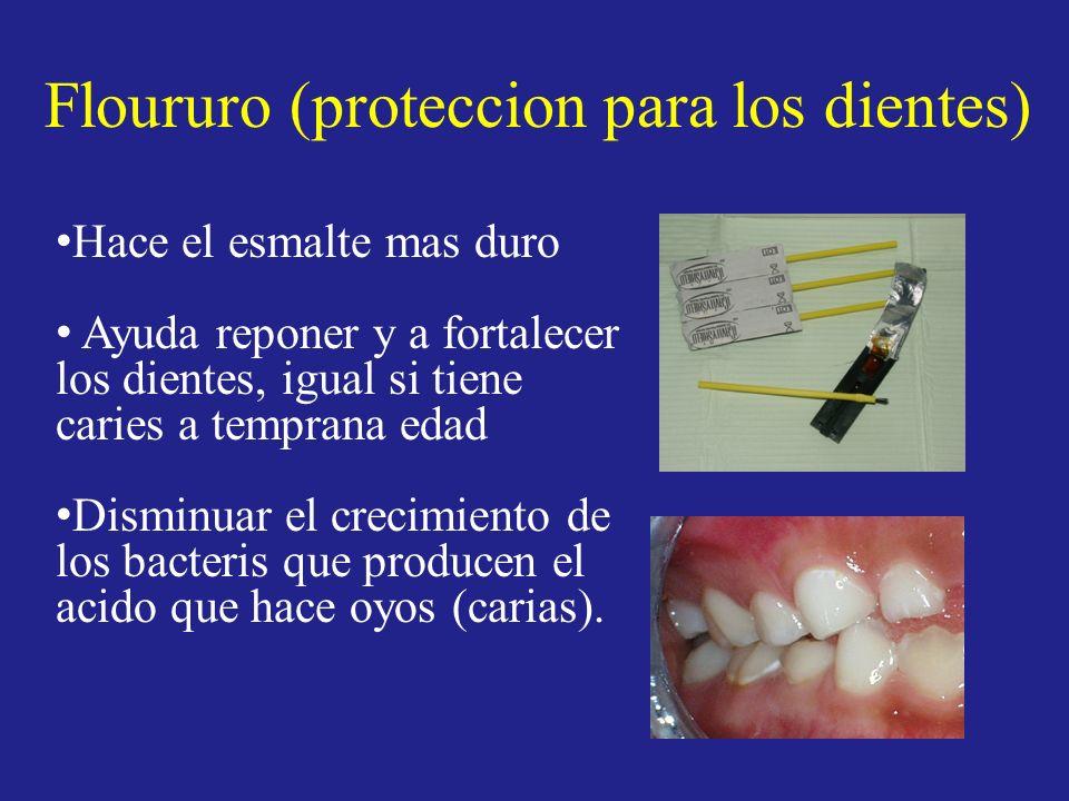 Floururo (proteccion para los dientes) Hace el esmalte mas duro Ayuda reponer y a fortalecer los dientes, igual si tiene caries a temprana edad Dismin