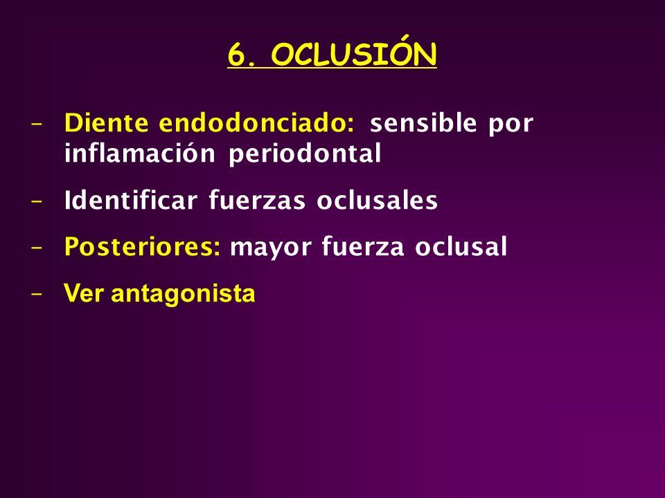 6. OCLUSIÓN –Diente endodonciado: sensible por inflamación periodontal –Identificar fuerzas oclusales –Posteriores: mayor fuerza oclusal – Ver antagon