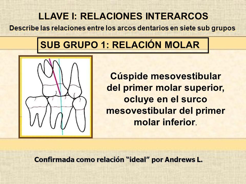 LLAVE I: RELACIONES INTERARCOS SUB GRUPO 1: RELACIÓN MOLAR Describe las relaciones entre los arcos dentarios en siete sub grupos Cúspide mesovestibular del primer molar superior, ocluye en el surco mesovestibular del primer molar inferior.