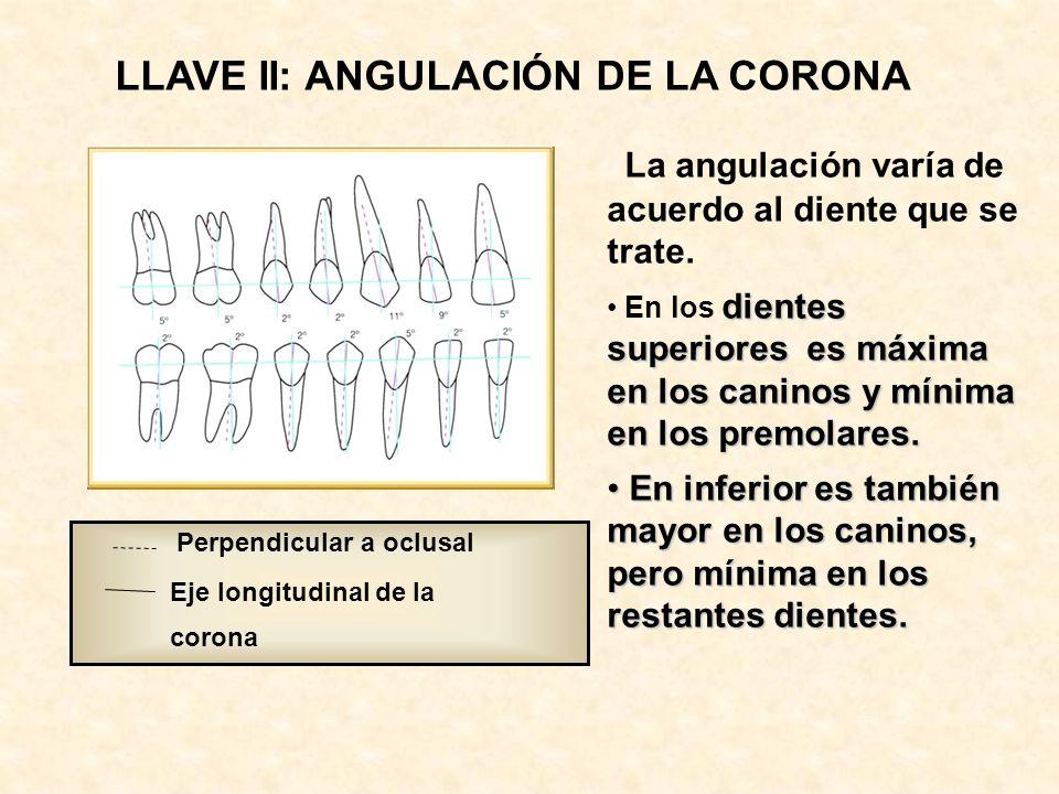Perpendicular a oclusal Eje longitudinal de la corona LLAVE II: ANGULACIÓN DE LA CORONA La angulación varía de acuerdo al diente que se trate.