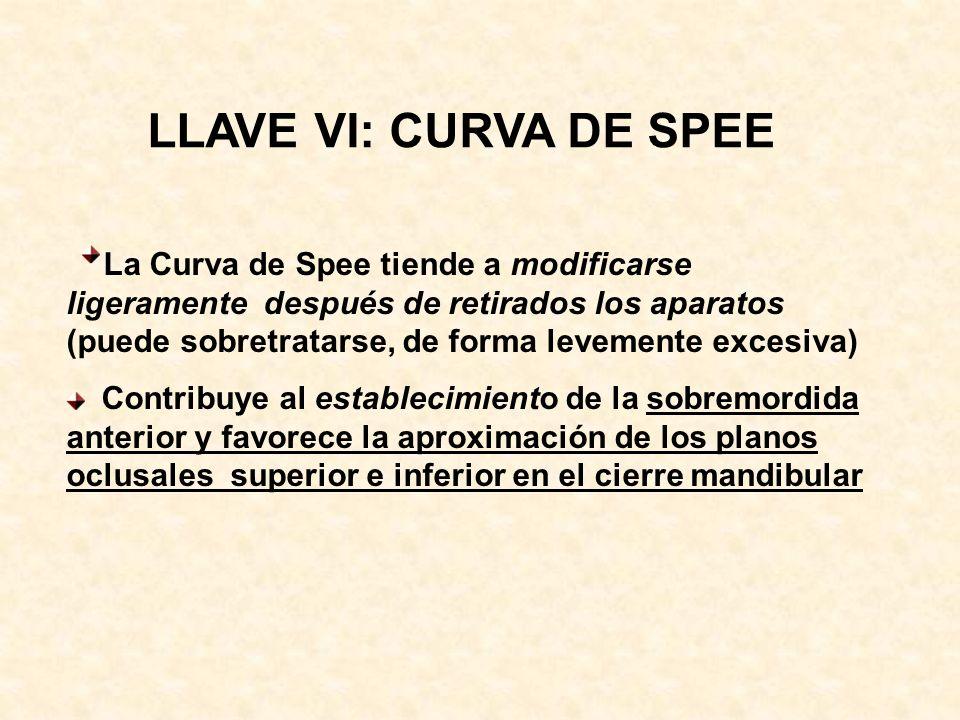 LLAVE VI: CURVA DE SPEE La Curva de Spee tiende a modificarse ligeramente después de retirados los aparatos (puede sobretratarse, de forma levemente excesiva) Contribuye al establecimiento de la sobremordida anterior y favorece la aproximación de los planos oclusales superior e inferior en el cierre mandibular