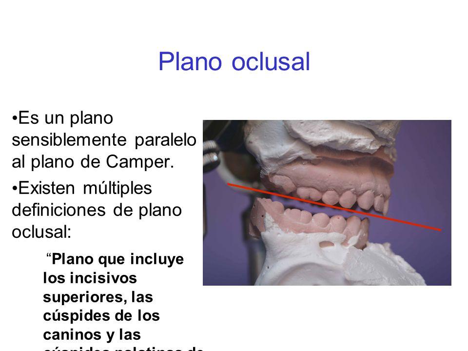 Plano oclusal Es un plano sensiblemente paralelo al plano de Camper. Existen múltiples definiciones de plano oclusal: Plano que incluye los incisivos