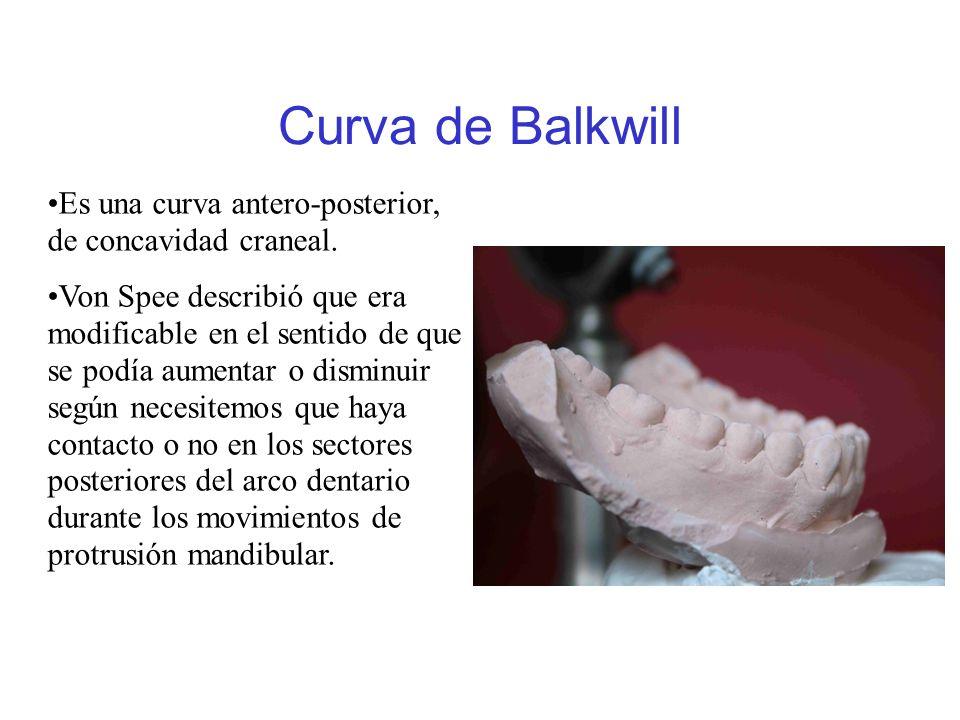 Curva de Balkwill Es una curva antero-posterior, de concavidad craneal. Von Spee describió que era modificable en el sentido de que se podía aumentar