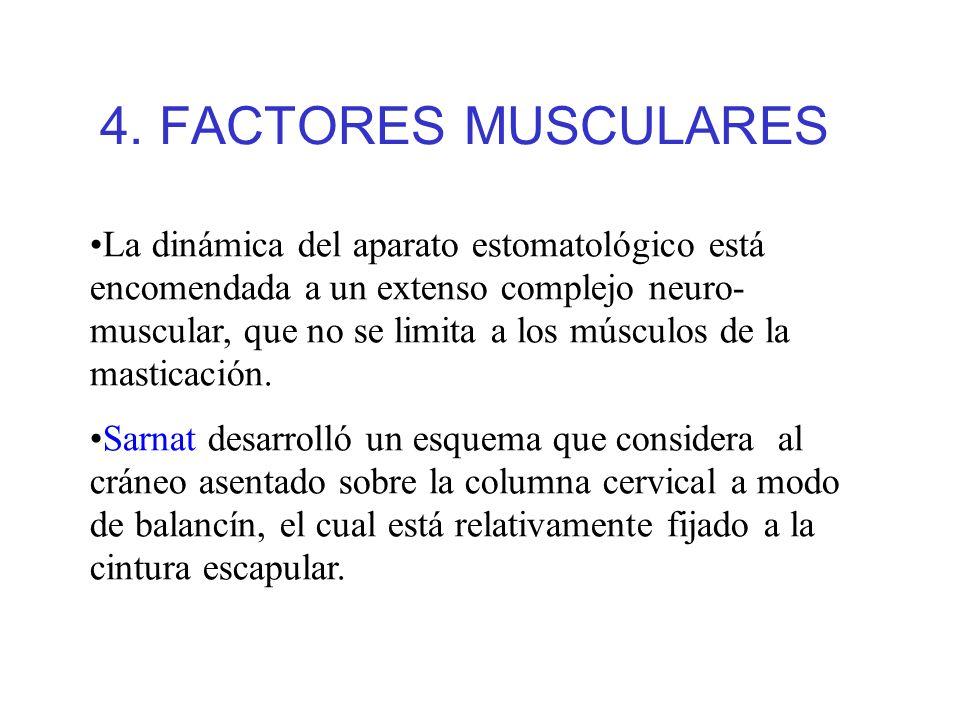 4. FACTORES MUSCULARES La dinámica del aparato estomatológico está encomendada a un extenso complejo neuro- muscular, que no se limita a los músculos