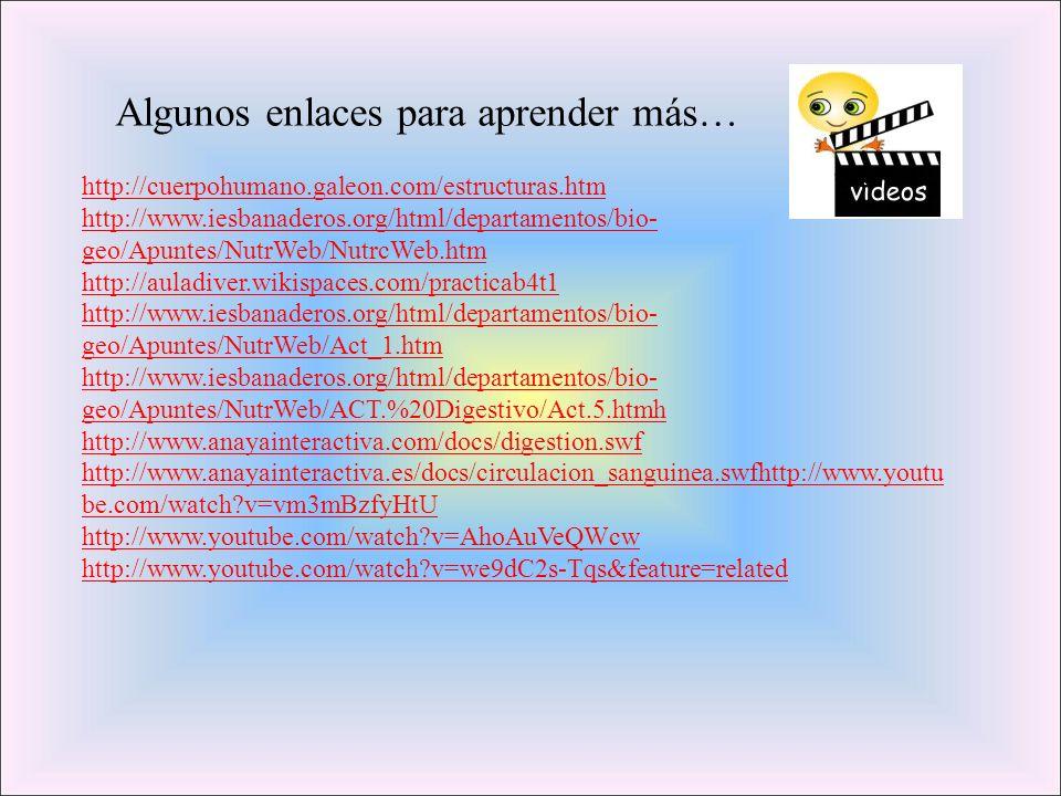 http://cuerpohumano.galeon.com/estructuras.htm http://www.iesbanaderos.org/html/departamentos/bio- geo/Apuntes/NutrWeb/NutrcWeb.htm http://auladiver.w