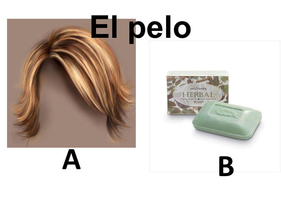 A B El pelo