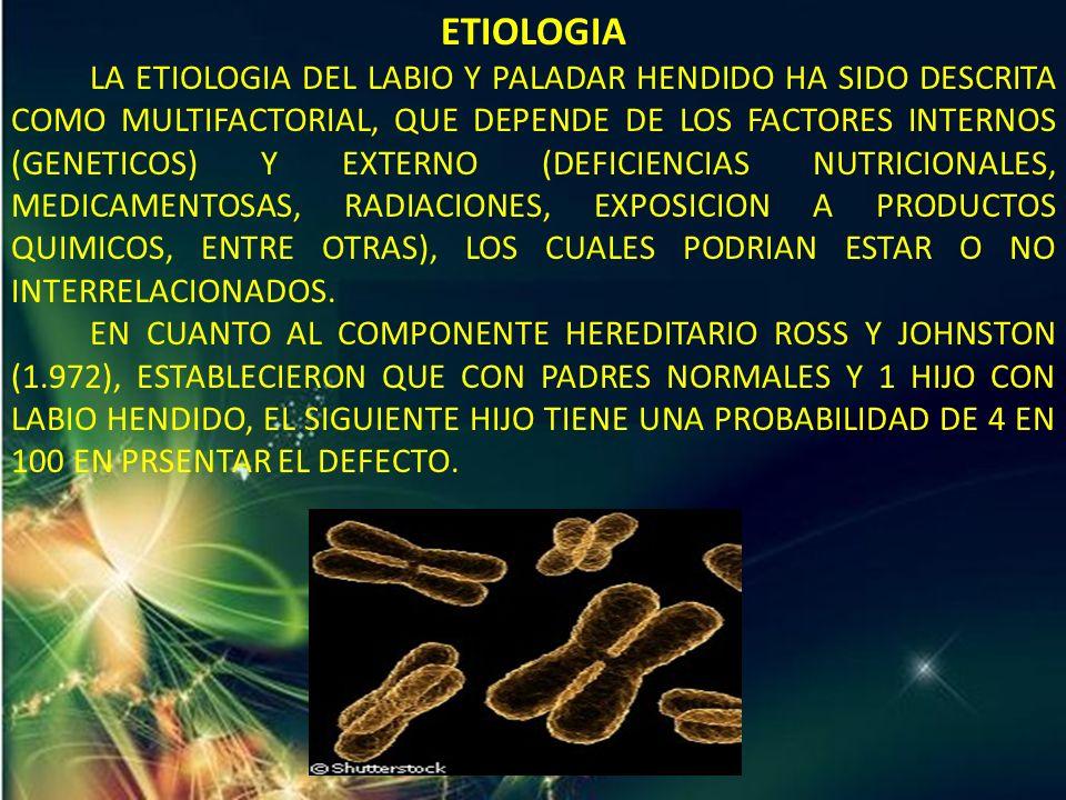 ETIOLOGIA LA ETIOLOGIA DEL LABIO Y PALADAR HENDIDO HA SIDO DESCRITA COMO MULTIFACTORIAL, QUE DEPENDE DE LOS FACTORES INTERNOS (GENETICOS) Y EXTERNO (D