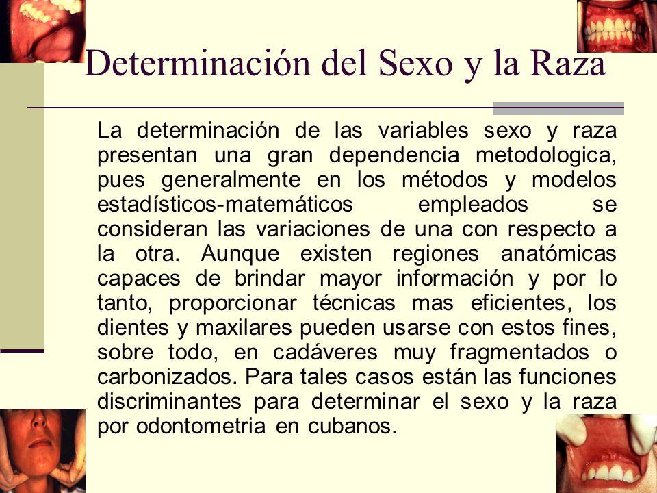 Determinación del Sexo y la Raza La determinación de las variables sexo y raza presentan una gran dependencia metodologica, pues generalmente en los métodos y modelos estadísticos-matemáticos empleados se consideran las variaciones de una con respecto a la otra.