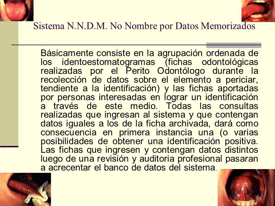 Sistema N.N.D.M.