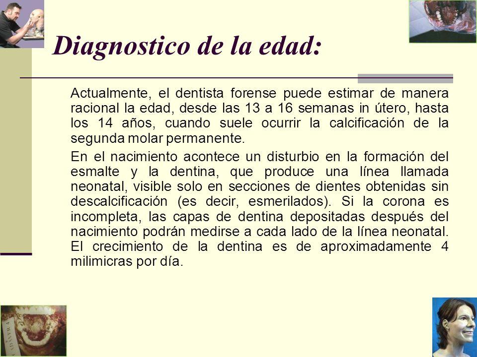 Diagnostico de la edad: Actualmente, el dentista forense puede estimar de manera racional la edad, desde las 13 a 16 semanas in útero, hasta los 14 años, cuando suele ocurrir la calcificación de la segunda molar permanente.