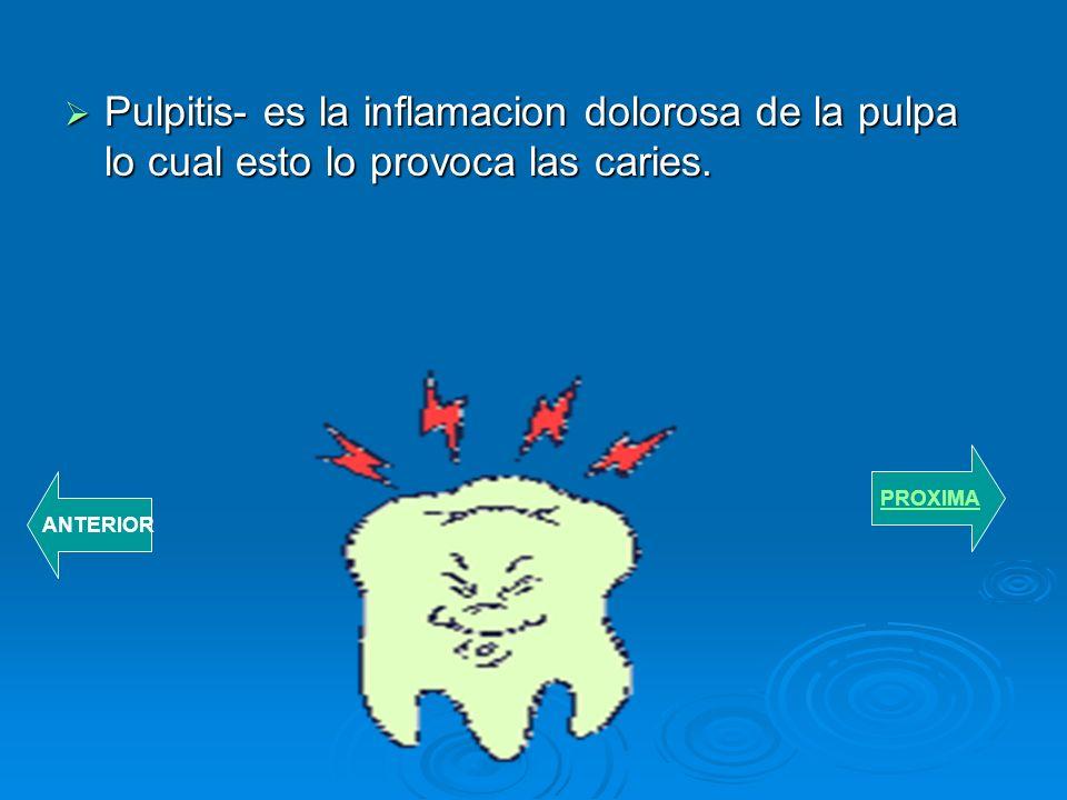 FUNCION DE LA ENCIA Ayuda a mantener fijo los dientes a los maxiliares. Ayuda a mantener fijo los dientes a los maxiliares. Ayuda al deslizamiento de