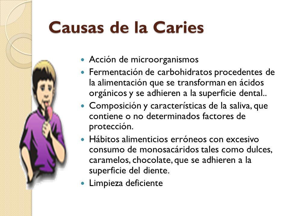 Causas de la Caries Acción de microorganismos Fermentación de carbohidratos procedentes de la alimentación que se transforman en ácidos orgánicos y se