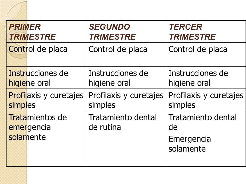 PRIMER TRIMESTRE SEGUNDO TRIMESTRE TERCER TRIMESTRE Control de placa Instrucciones de higiene oral Profilaxis y curetajes simples Tratamientos de emer