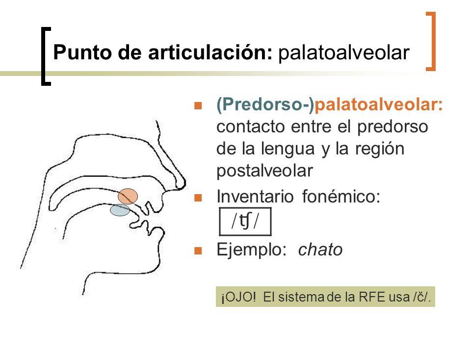 Punto de articulación: palatoalveolar (Predorso-)palatoalveolar: contacto entre el predorso de la lengua y la región postalveolar Inventario fonémico: