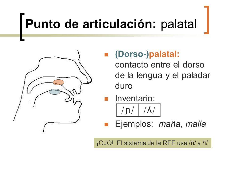 Punto de articulación: palatal (Dorso-)palatal: contacto entre el dorso de la lengua y el paladar duro Inventario: Ejemplos: maña, malla /ɲ//ʎ/ ¡OJO!