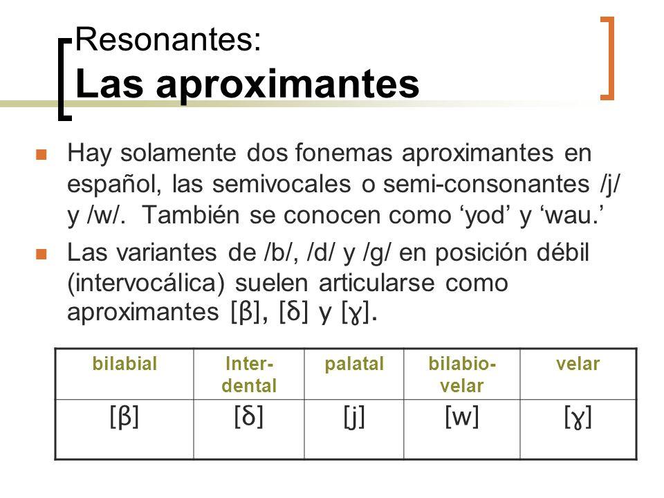 Resonantes: Las aproximantes Hay solamente dos fonemas aproximantes en español, las semivocales o semi-consonantes /j/ y /w/. También se conocen como