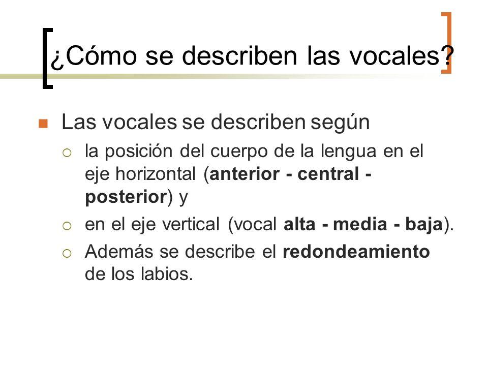 ¿Cómo se describen las vocales? Las vocales se describen según la posición del cuerpo de la lengua en el eje horizontal (anterior - central - posterio
