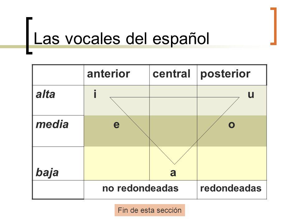 Las vocales del español anteriorcentralposterior alta i u mediaeo bajaa no redondeadasredondeadas Fin de esta sección