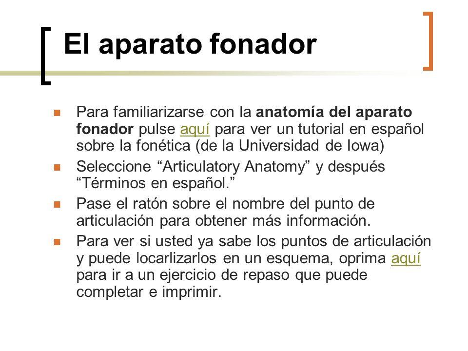 El aparato fonador Para familiarizarse con la anatomía del aparato fonador pulse aquí para ver un tutorial en español sobre la fonética (de la Univers