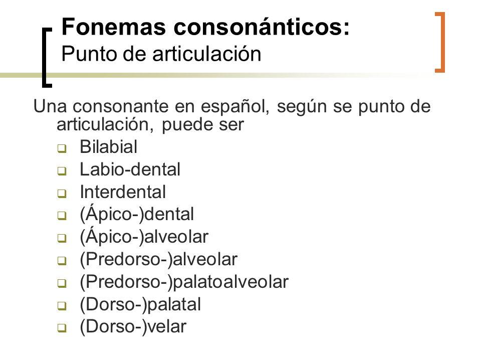 Fonemas consonánticos: Punto de articulación Una consonante en español, según se punto de articulación, puede ser Bilabial Labio-dental Interdental (Á