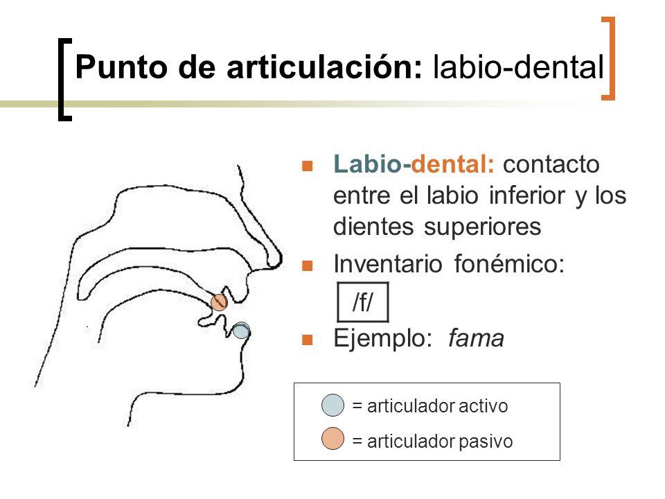 Punto de articulación: labio-dental Labio-dental: contacto entre el labio inferior y los dientes superiores Inventario fonémico: Ejemplo: fama = artic
