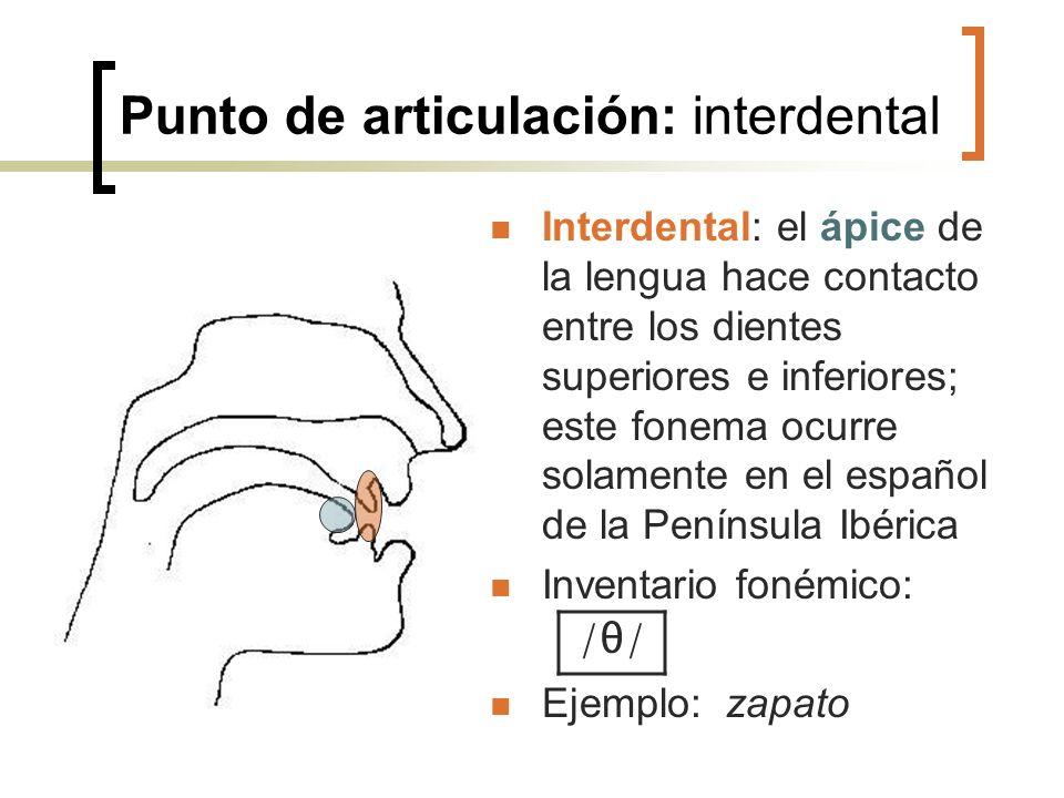 Punto de articulación: interdental Interdental: el ápice de la lengua hace contacto entre los dientes superiores e inferiores; este fonema ocurre sola