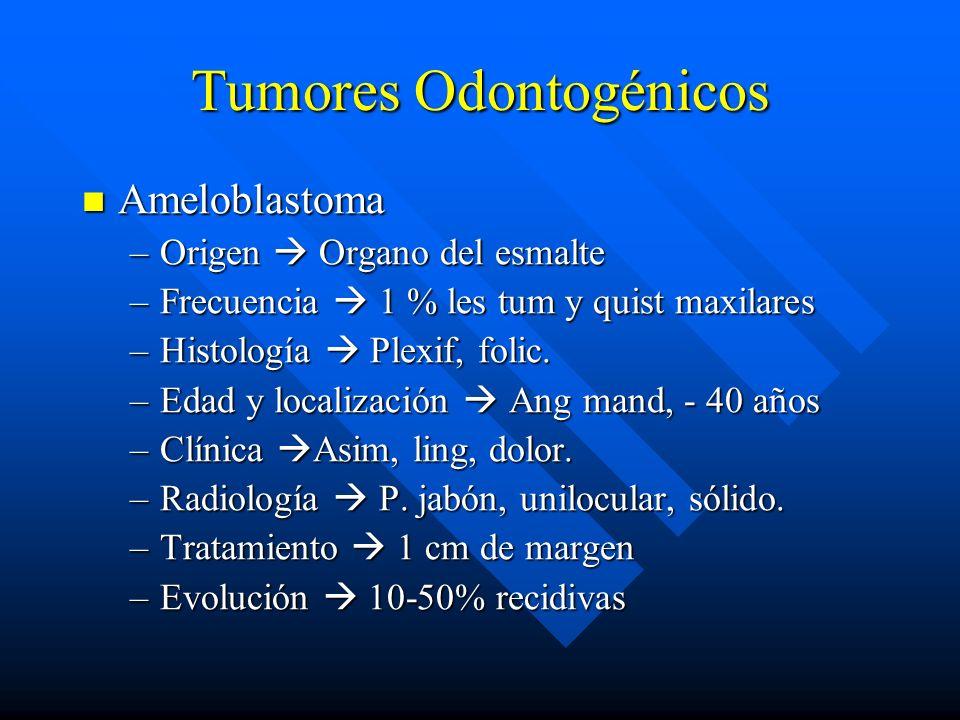 Tumores Odontogénicos Ameloblastoma Ameloblastoma –Origen Organo del esmalte –Frecuencia 1 % les tum y quist maxilares –Histología Plexif, folic. –Eda