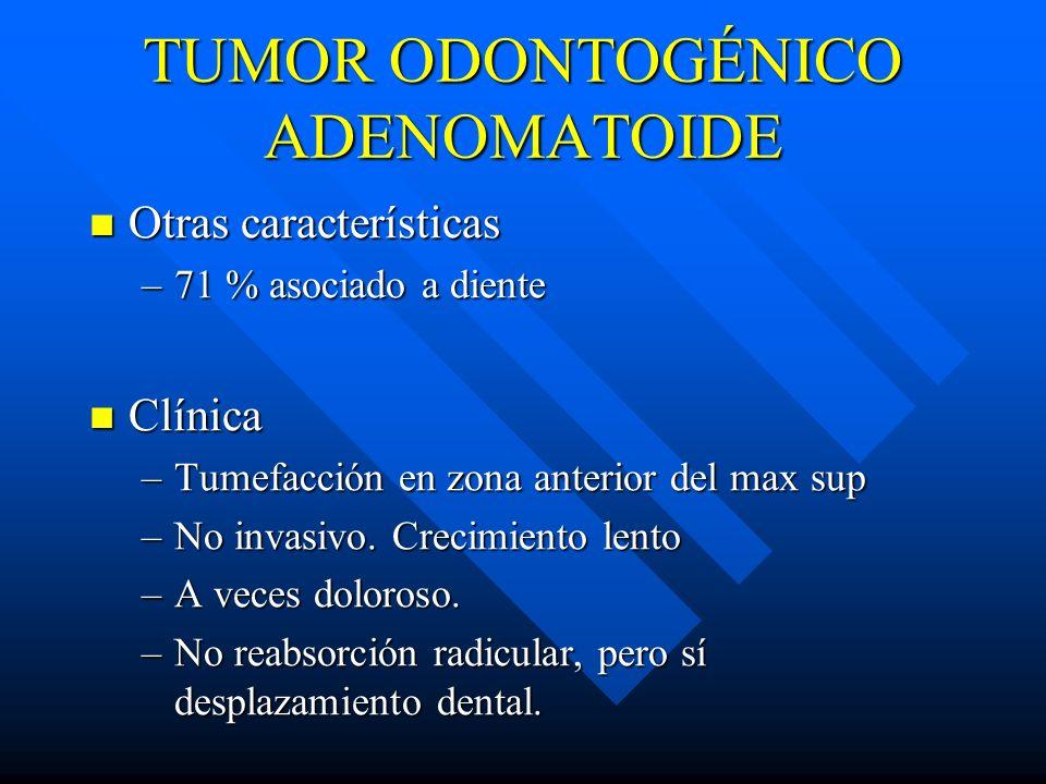 TUMOR ODONTOGÉNICO ADENOMATOIDE Otras características Otras características –71 % asociado a diente Clínica Clínica –Tumefacción en zona anterior del