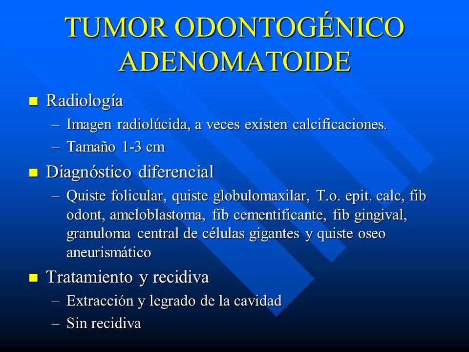 TUMOR ODONTOGÉNICO ADENOMATOIDE Radiología Radiología –Imagen radiolúcida, a veces existen calcificaciones. –Tamaño 1-3 cm Diagnóstico diferencial Dia
