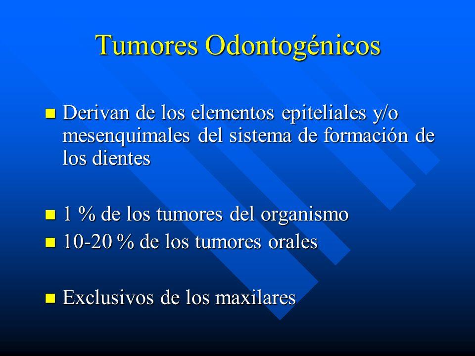 Tumores Odontogénicos Derivan de los elementos epiteliales y/o mesenquimales del sistema de formación de los dientes Derivan de los elementos epitelia