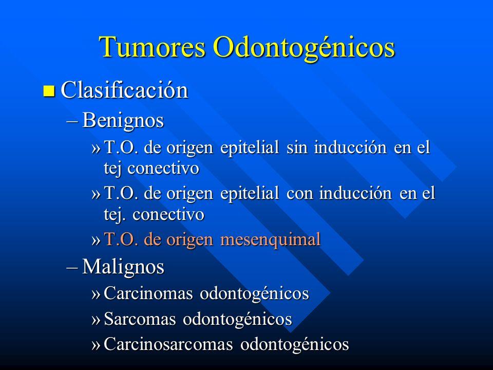 Tumores Odontogénicos Clasificación Clasificación –Benignos »T.O. de origen epitelial sin inducción en el tej conectivo »T.O. de origen epitelial con