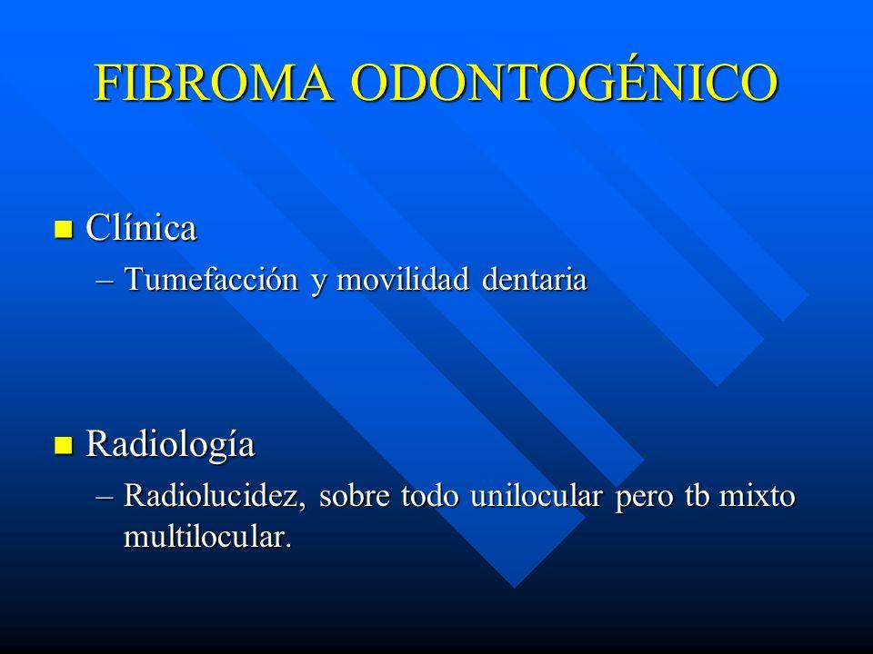 FIBROMA ODONTOGÉNICO Clínica Clínica –Tumefacción y movilidad dentaria Radiología Radiología –Radiolucidez, sobre todo unilocular pero tb mixto multil