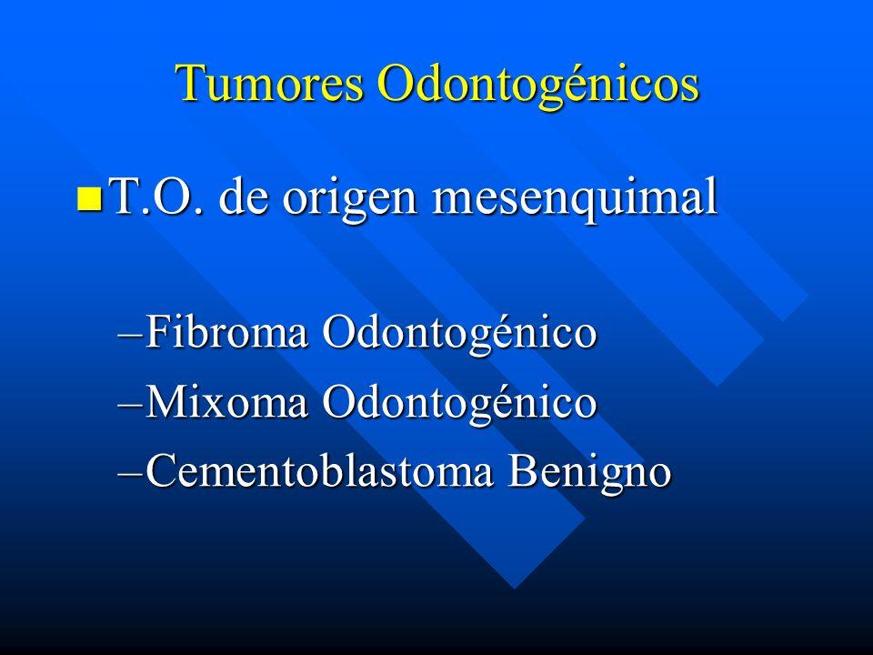 Tumores Odontogénicos T.O. de origen mesenquimal T.O. de origen mesenquimal –Fibroma Odontogénico –Mixoma Odontogénico –Cementoblastoma Benigno
