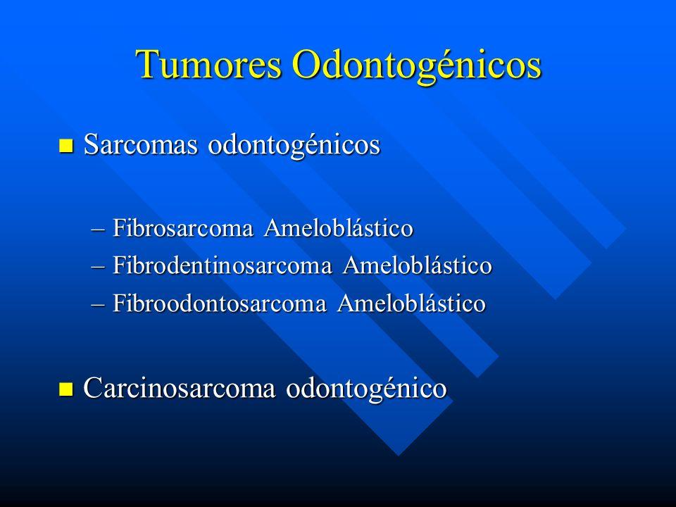 Tumores Odontogénicos Sarcomas odontogénicos Sarcomas odontogénicos –Fibrosarcoma Ameloblástico –Fibrodentinosarcoma Ameloblástico –Fibroodontosarcoma