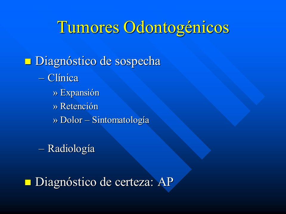 Tumores Odontogénicos Diagnóstico de sospecha Diagnóstico de sospecha –Clínica »Expansión »Retención »Dolor – Sintomatología –Radiología Diagnóstico d