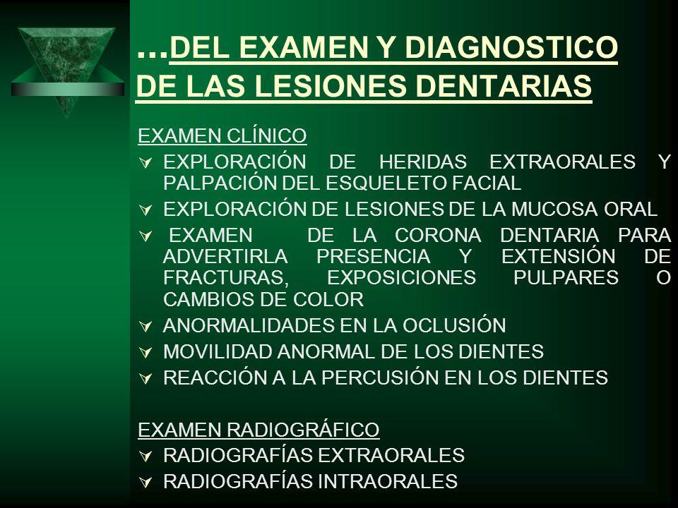 FRACTURA DE LA CORONA EXAMEN CLÍNICO EXTENSIÓN DE LA FRACTURA EXPOSICIÓN DE LA PULPA DISLOCACIÓN REACCIÓN A LA PRUEBAS DE VITALIDAD GENERALMENTE LESIONES POR CAÍDAS EXAMEN RADIOGRÁFICO TAMAÑO DE LA CAVIDAD PULPAR GRADO DE DESARROLLO DE LA RAÍZ