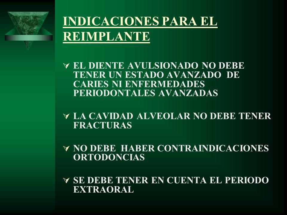 TÉCNICA DE REIMPLANTE COLOCAR EL DIENTE EN SOLUCIÓN SALINA.