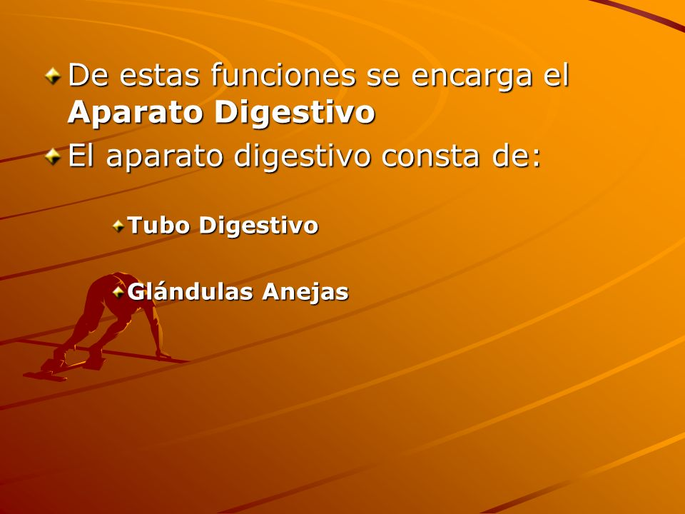 De estas funciones se encarga el Aparato Digestivo El aparato digestivo consta de: Tubo Digestivo Glándulas Anejas