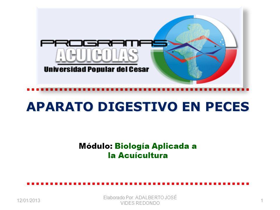 12/01/2013 Elaborado Por: ADALBERTO JOSÉ VIDES REDONDO 1 APARATO DIGESTIVO EN PECES Módulo: Biología Aplicada a la Acuícultura