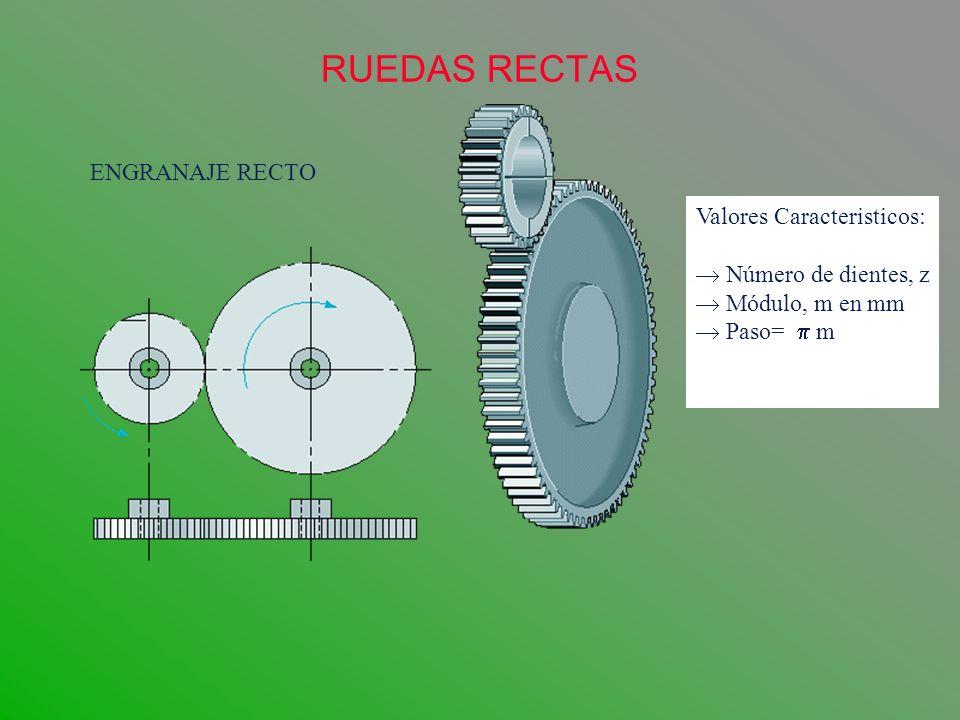 RUEDAS RECTAS ENGRANAJE RECTO Valores Caracteristicos: Número de dientes, z Módulo, m en mm Paso= m