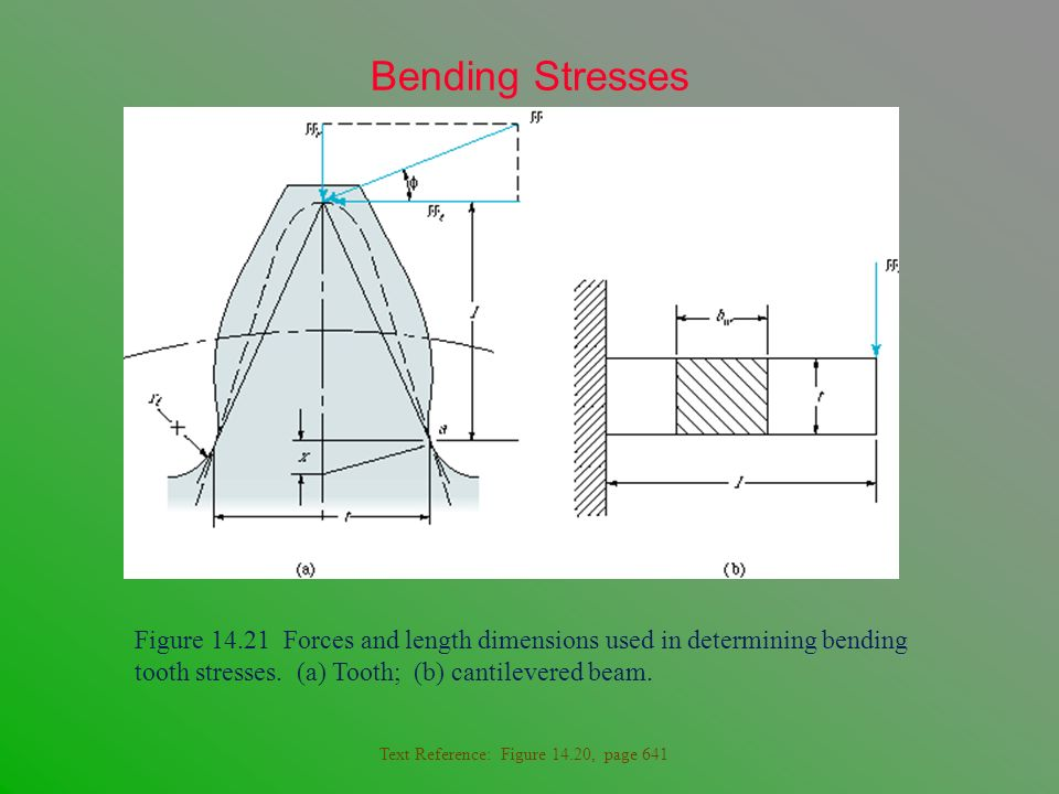 Bending Stresses Figure 14.21 Forces and length dimensions used in determining bending tooth stresses. (a) Tooth; (b) cantilevered beam. Text Referenc