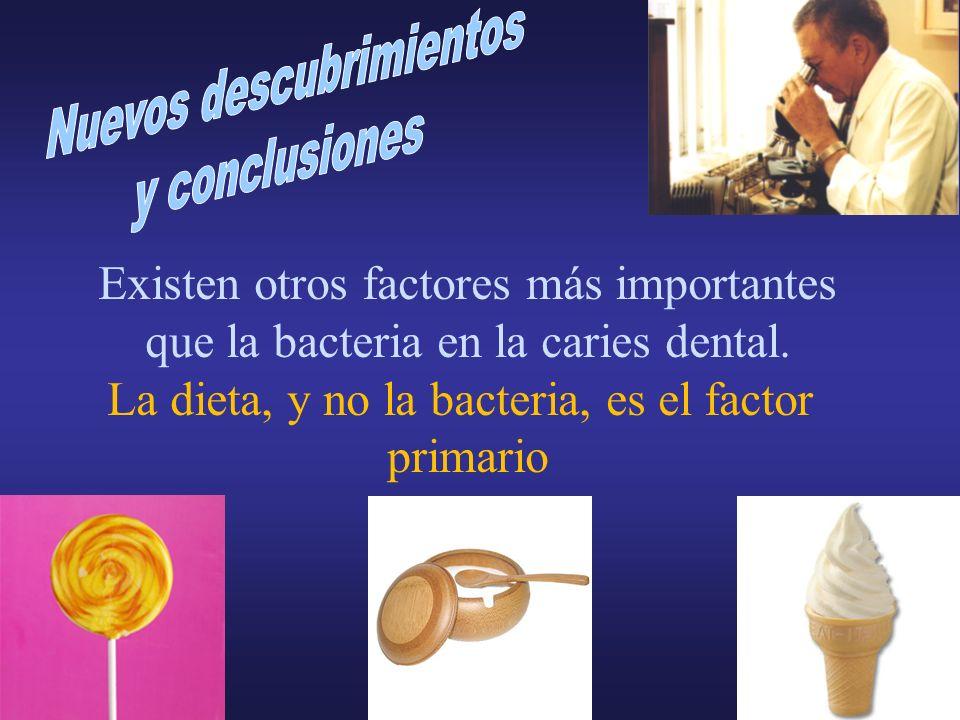 Existen otros factores más importantes que la bacteria en la caries dental. La dieta, y no la bacteria, es el factor primario