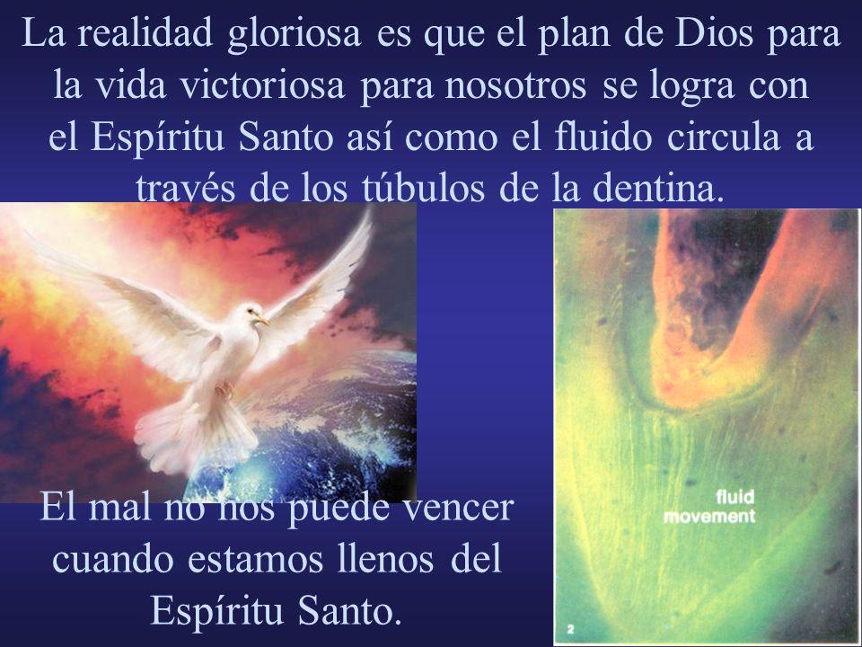 La realidad gloriosa es que el plan de Dios para la vida victoriosa para nosotros se logra con el Espíritu Santo así como el fluido circula a través d