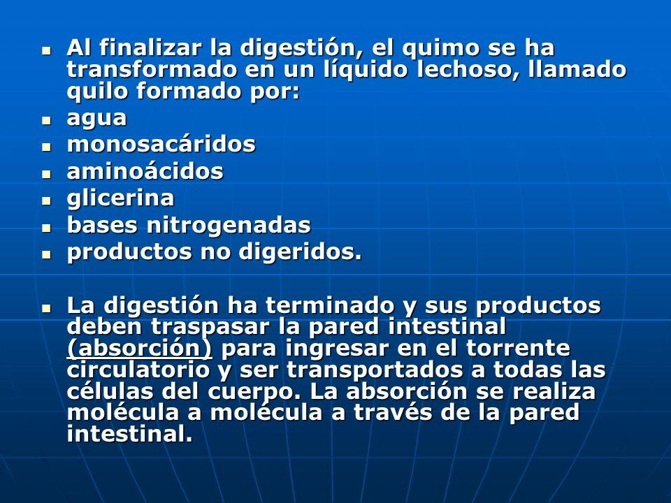 COMPOSICIÓN DE LOS JUGOS QUE VIERTEN AL INTESTINO Bilis Jugo intestinal Jugo pancreático agua sales inorgánicas sales biliares pigmentos biliares ácid