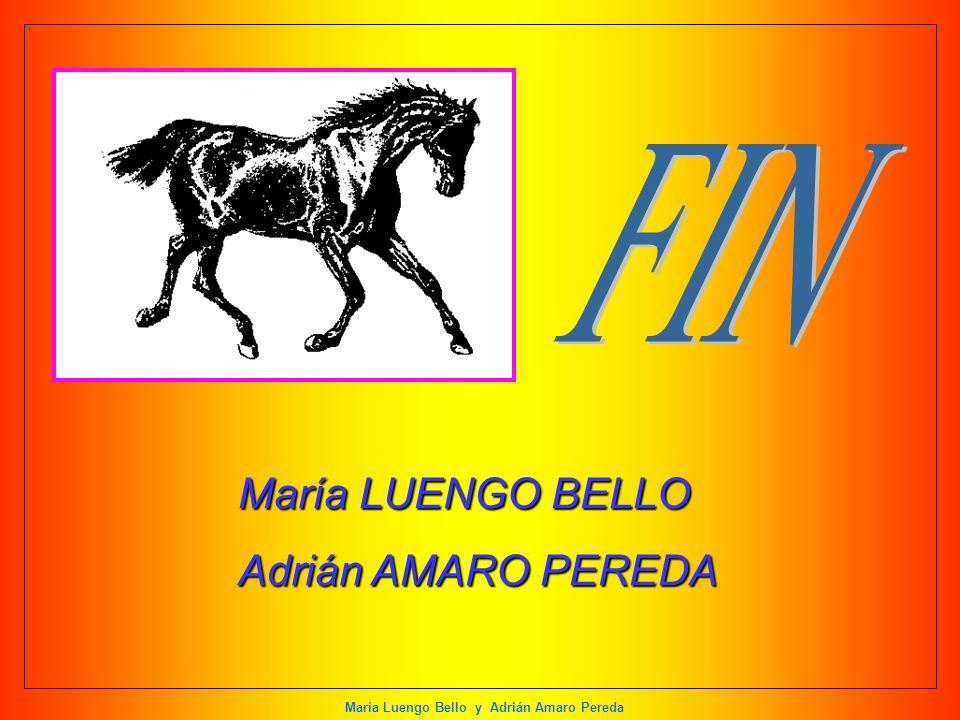 María Luengo Bello y Adrián Amaro Pereda María LUENGO BELLO Adrián AMARO PEREDA