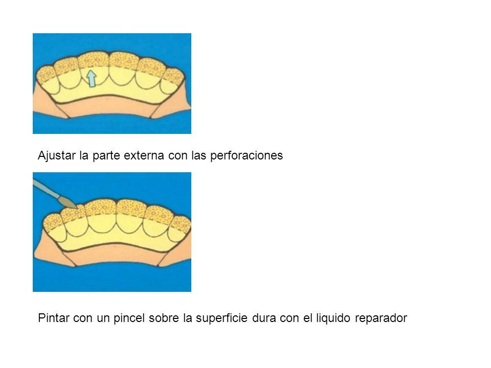 Ajustar la parte externa con las perforaciones Pintar con un pincel sobre la superficie dura con el liquido reparador