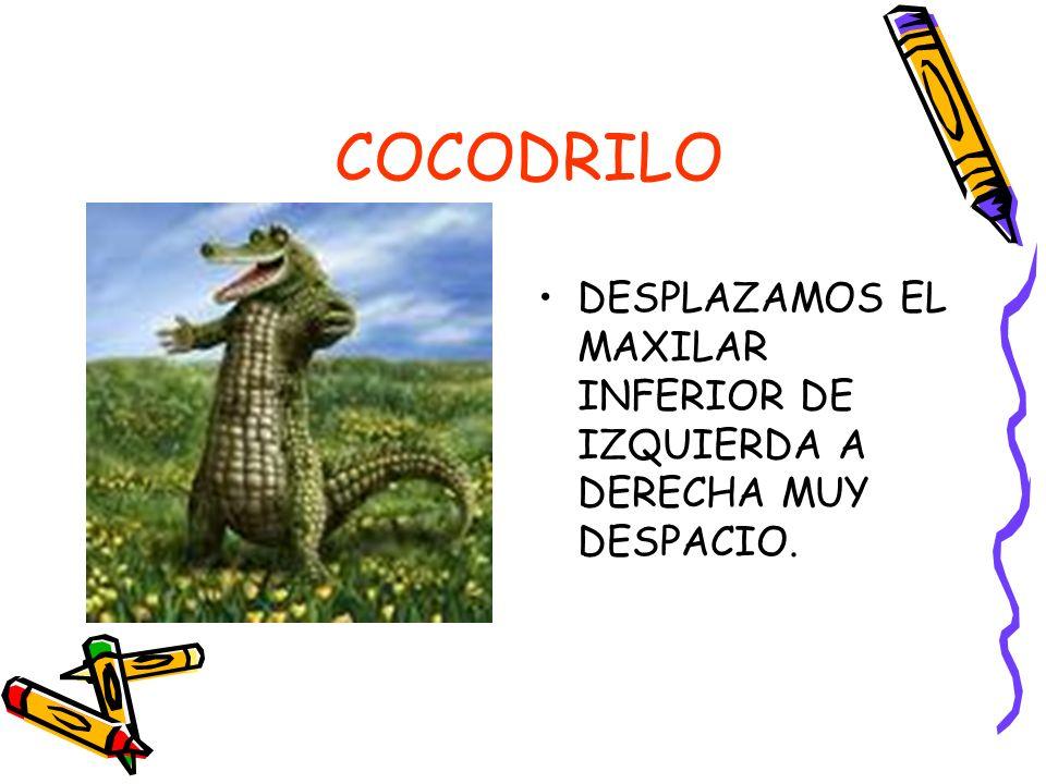 COCODRILO DESPLAZAMOS EL MAXILAR INFERIOR DE IZQUIERDA A DERECHA MUY DESPACIO.