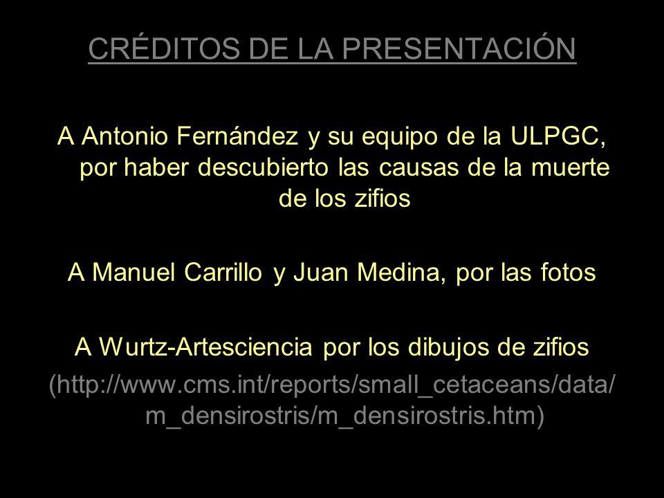 CRÉDITOS DE LA PRESENTACIÓN A Antonio Fernández y su equipo de la ULPGC, por haber descubierto las causas de la muerte de los zifios A Manuel Carrillo