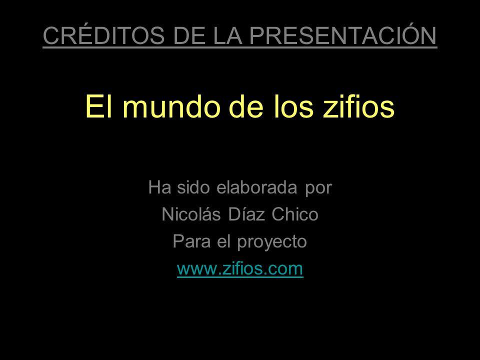 CRÉDITOS DE LA PRESENTACIÓN El mundo de los zifios Ha sido elaborada por Nicolás Díaz Chico Para el proyecto www.zifios.com