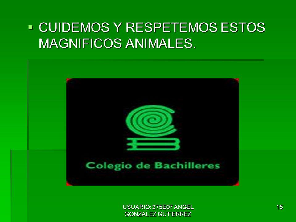 USUARIO: 275E07 ANGEL GONZALEZ GUTIERREZ 15 CUIDEMOS Y RESPETEMOS ESTOS MAGNIFICOS ANIMALES.